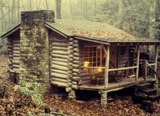 Beyond The Cabin Door