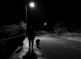 Dog-Walking Ghost