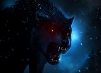 Beast in the Night!!!!