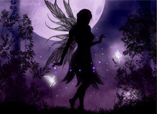 Fairy Follies