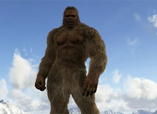 Wetzel Co Bigfoot?